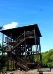 Mangrove Trail, Bali