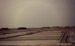 Ladang garam...sepanjang jalan pantura