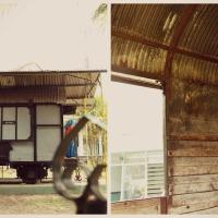 Menjejak Sejarah di Museum Brawijaya Malang